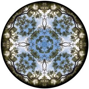 kaleidoscope © Belinda Allen